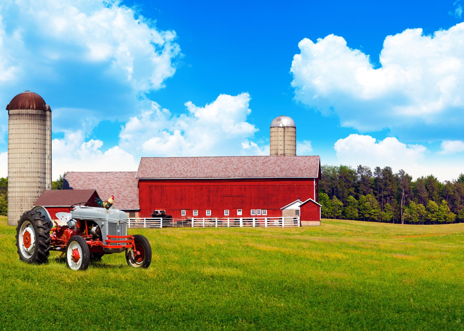 Inland Empire Farm & Ranch Insurance
